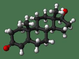 Molecuulmodel van testosteron
