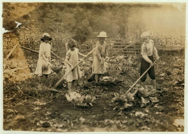 Kinderen werken op een boerderij in Mount Vernon, Kentucky. Bron: www.pbs.org