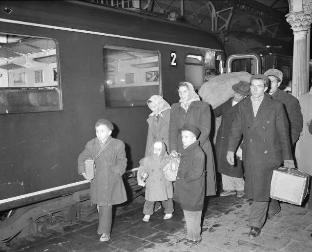 Aankomst Rode Kruistrein met Hongaren te Utrecht, november 1956. Foto: Nationaal Archief
