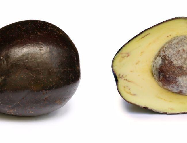 Avocado's - cc