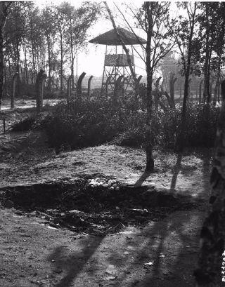Tegenlicht opname met prikkeldraadomheining op achtergrond, met bloemen op voorgrond (collectie Canadian Forces Joint Imagery Centre)