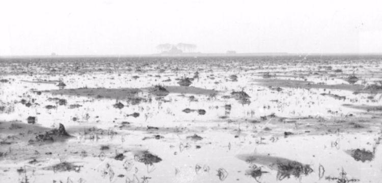 De net drooggevallen Noordoostpolder, met op de achtergrond Schokland, 1941