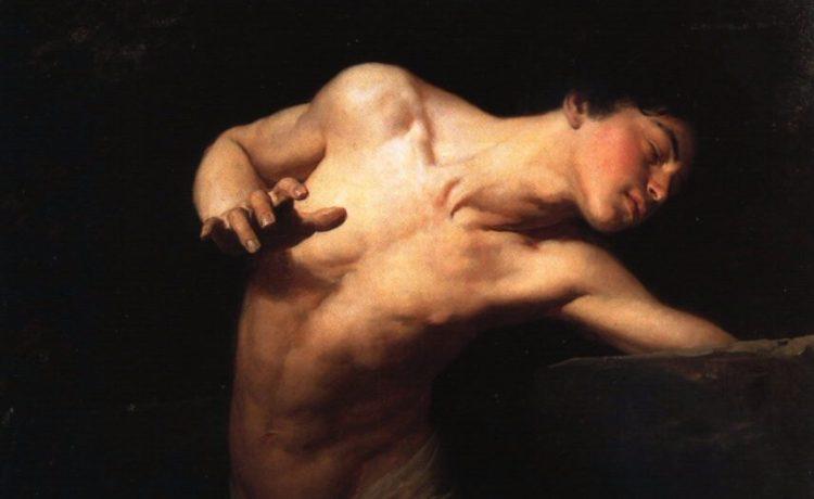 Narcissus - cc