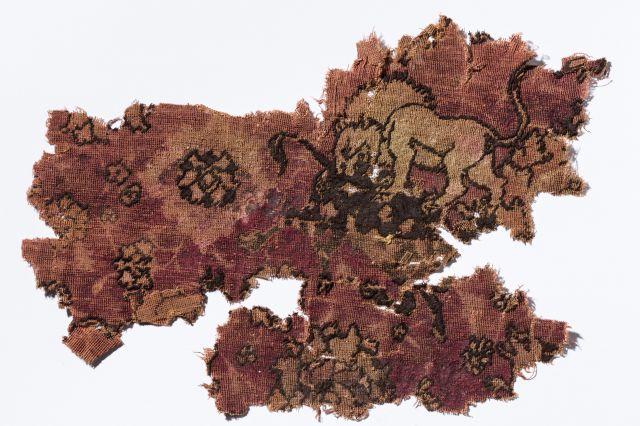Deel van het tapijt