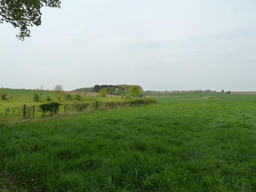 Voormalig galgenveld bij Margraten (Limburg), tot 1795 een gebruikelijke executieplaats buiten de stadspoorten.