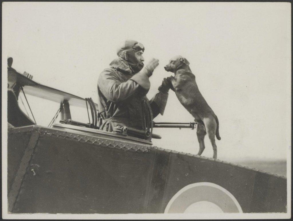 Ridders van de lucht (1914-1918)