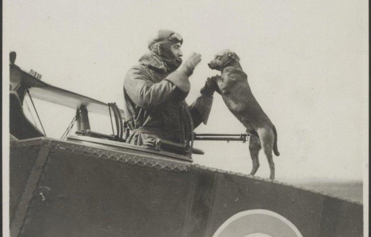 Een Britse piloot heeft een onderonsje met zijn hond op zijn vliegtuig. Nationaal Archief
