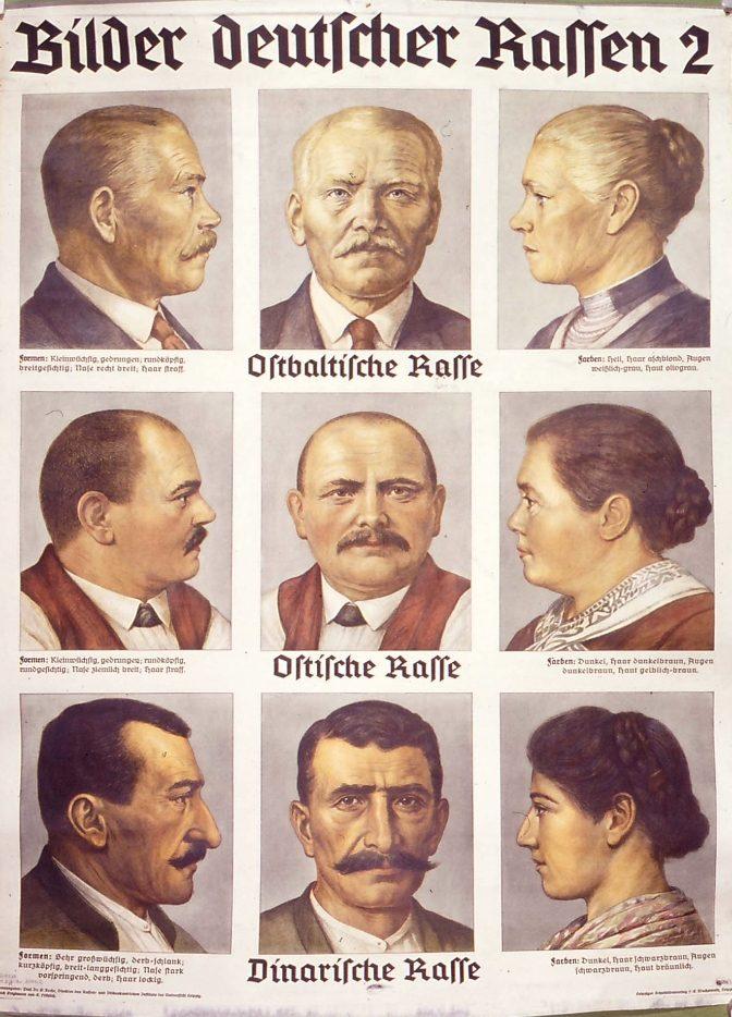 Bilder Deutscher Rassen II
