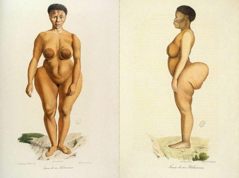Afbeelding van Saartjie Baartman in 'Histoire Naturelle des Mammifères, tome II'