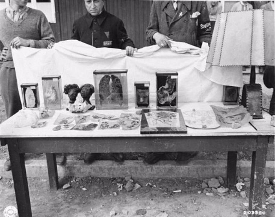 Uitgestald op tafel in het bevrijdde Buchenwald liggen getatoeëerde stukken mensenhuid, menselijke lichaamsdelen op sterk water en een lampenkap die van mensenhuid gemaakt zou moeten zijn. National Archives Washington / Publiek domein