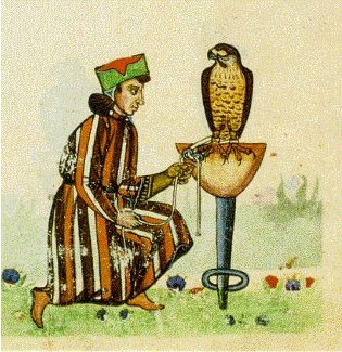 Afbeelding uit het Valkenboek van keizer Frederik II