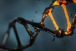 DNA-molecuul (cc - Pixabay - lisichik)