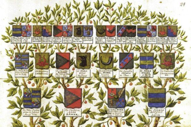 Heraldiek - Familiewapens en wapenschilden (Publiek Domein - wiki)