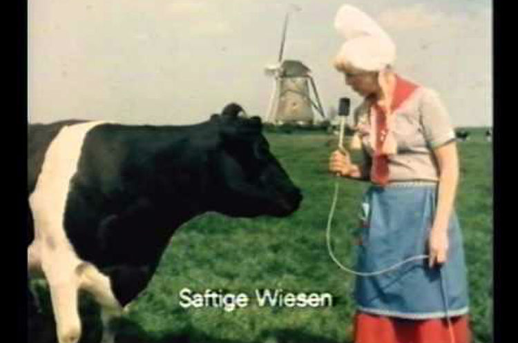 Frau Antje – Echte kaas uit Holland (voor Duitsers)