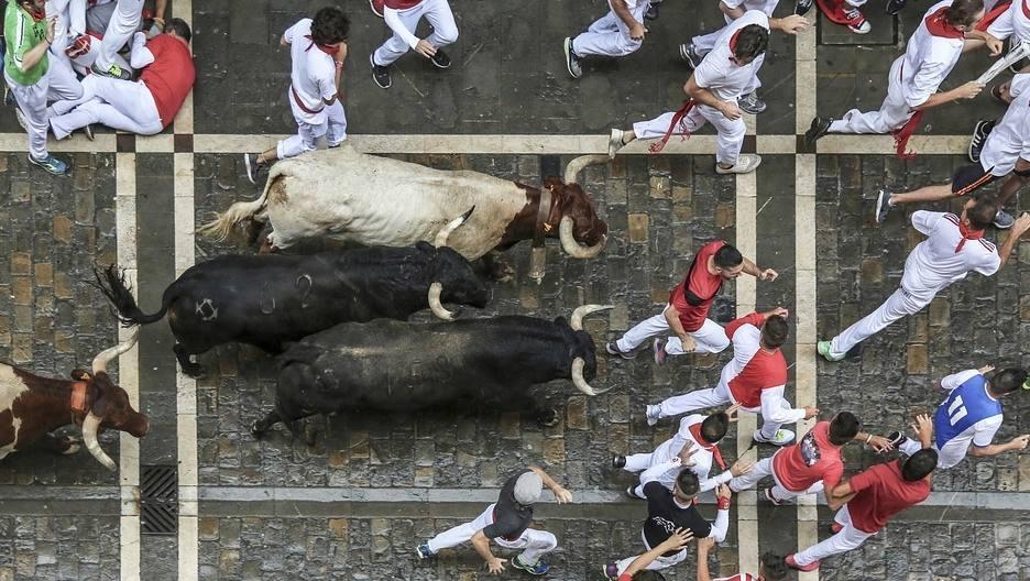 Stieren en bolwerken van Pamplona