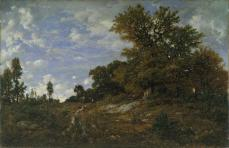 Théodore Rousseau; The Edge of the Woods at Monts-Girard, Fontainebleau Forest; 1854; oil on wood; 80 x 121.9 cm; The Metropolitan Museum of Art