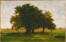 Théodore Rousseau; Group of Oaks at Apremont; 1850-52; oil on canvas; 63.5 x 99.5 cm; Musée du Louvre