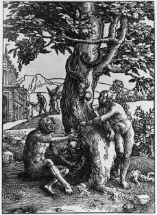 Lucas van Leyden; The Fall of Man; woodcut; 243 x 175 mm