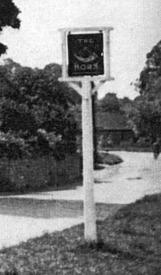 The Horn Inn [Sheila Terry]