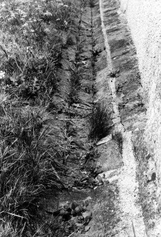 Ground gulley