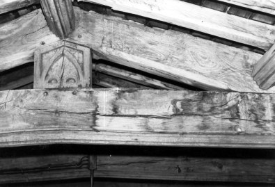 Deathwatch beetle and rotting timbers