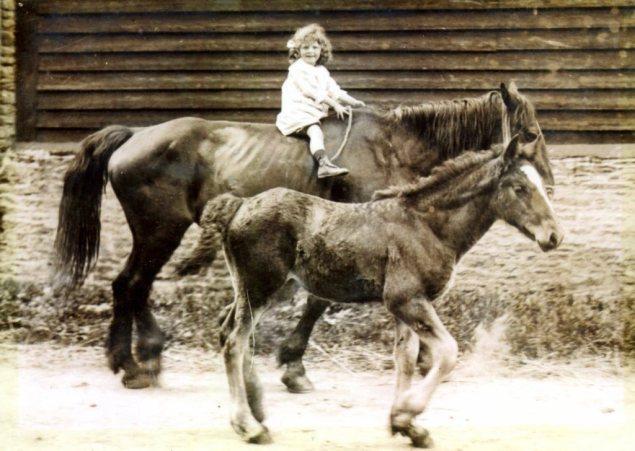 Dora Riding Horses c 1916