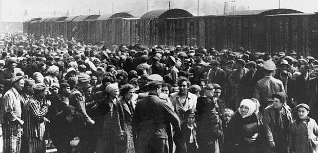 Auschwitz Hungarian Jews cropped