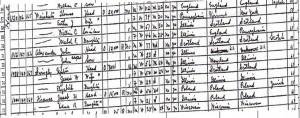 1930 Census, Harlem Boulevard