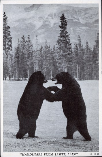"""Handshake from Jasper Park"". Copyright product of Harry Rowed, O'Neill and Associates, Ltd, Jasper, Alta, circa 1940. peel.library.ualberta.ca/postcards/PC008204.html"