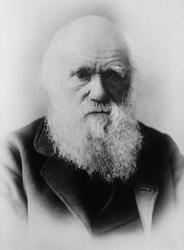 Charles Darwin 1879