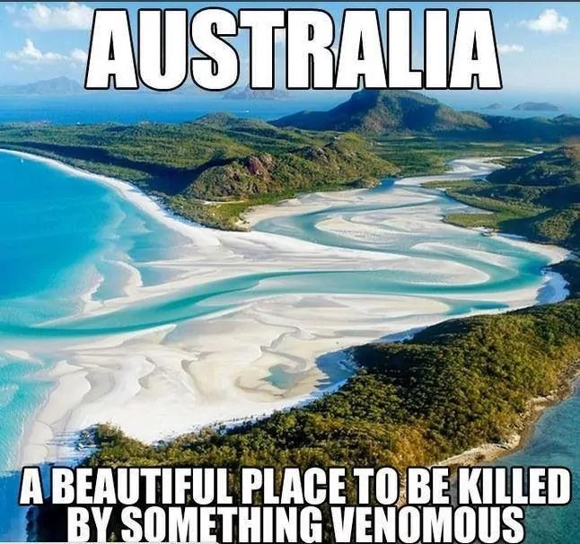 Australia Travel Meme