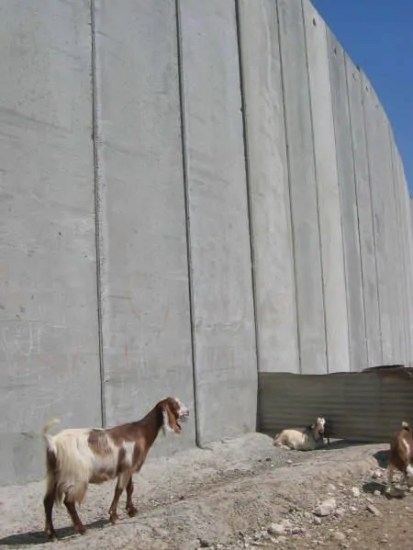 The West Bank Separation Wall - Photo by Tamer Halaseh