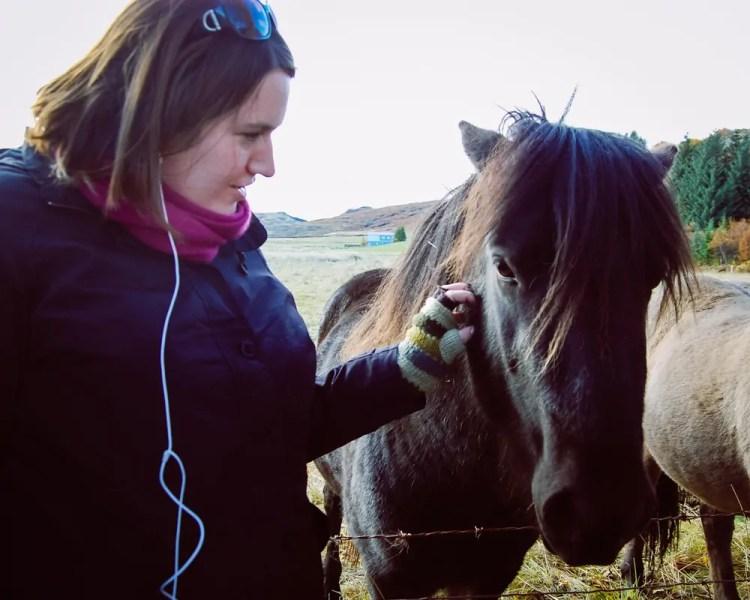 Iceland - Reykjavik - Icelandic Horses Stephanie