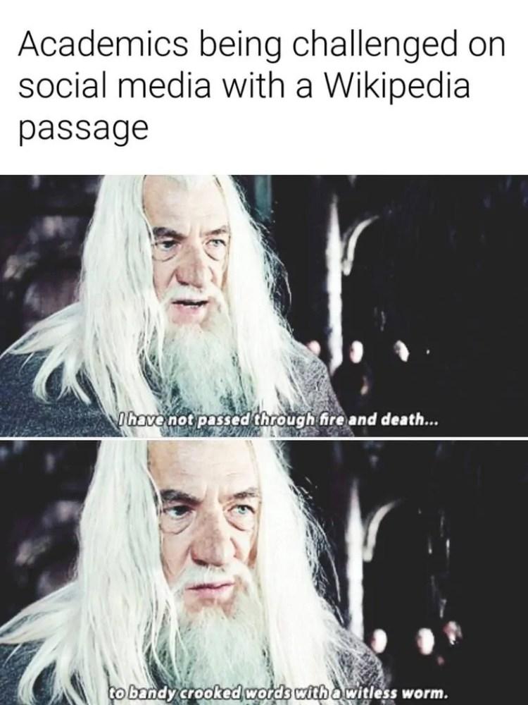 Historian memes