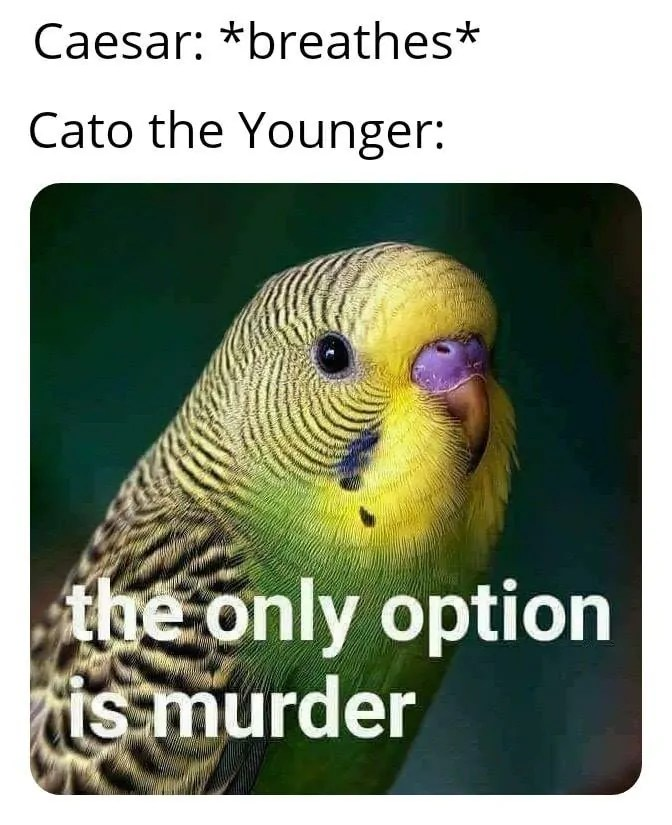 cato the younger memes