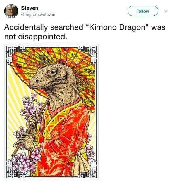 kimono dragon meme