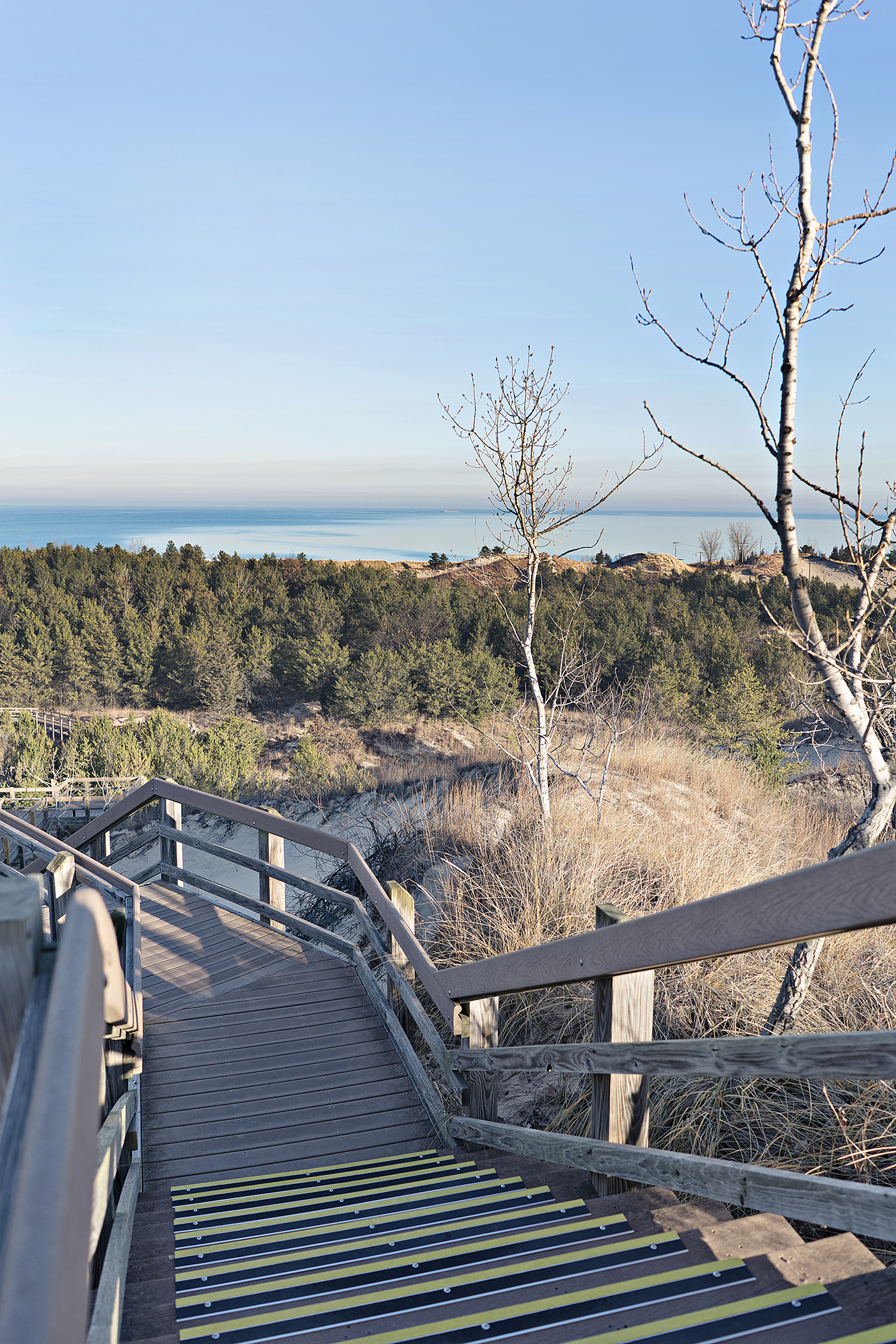 Succession Trail, The Indiana Dunes, Travel