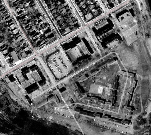 Strathcona Heights 1965