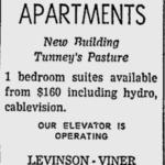 Ad for the Burnstone. Source: Ottawa Citizen, June 1, 1973, p. 42.