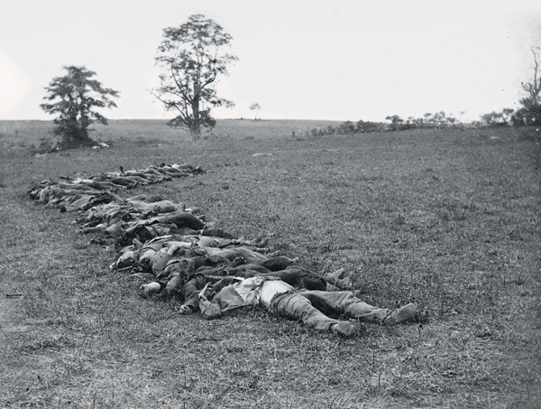 The Dead of Antietam