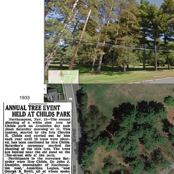 WWI MEMORIAL TREES PLANTING