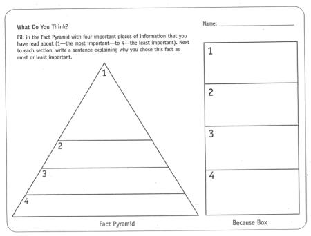 fact pyramid 2