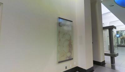 Auckland Museum: Origins