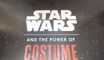 "Museum of Fine Arts, St. Petersburg: Star Wars™ ""Power of the Costume"" 3D Model"