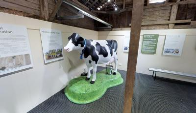 Belgenny Farm Creamery 3D Model