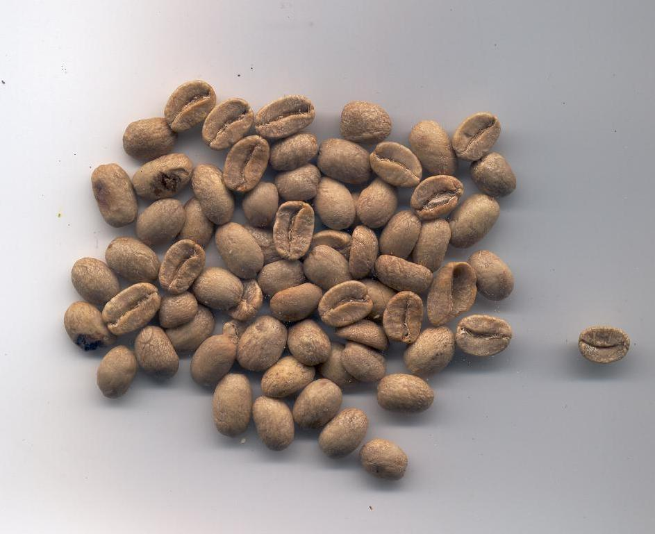 Green coffee beans3