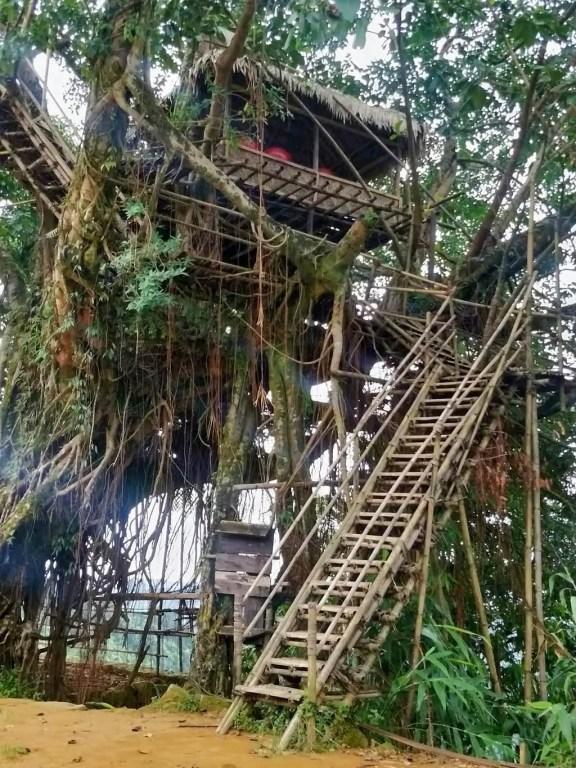 Tourism backpacking - Kundengrim Treehouse