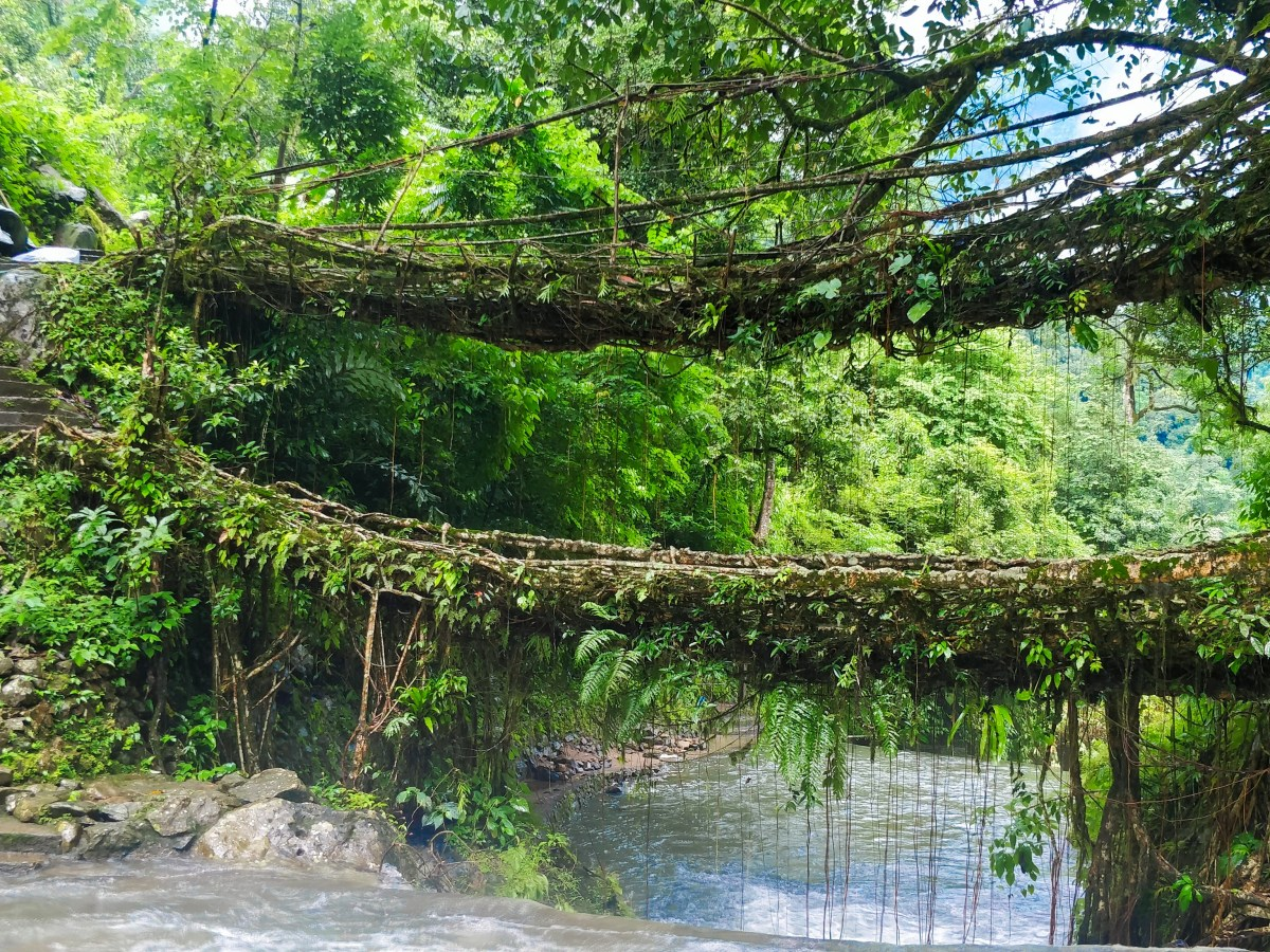 Nongriat double decker root bridge - best places to visit in north east india in august