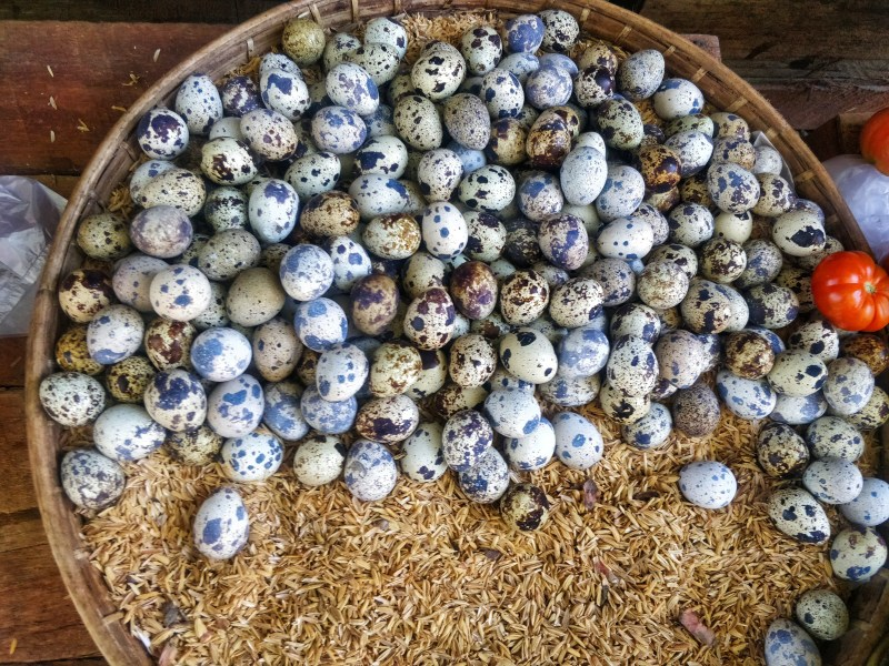 Quail eggs in Tamu market