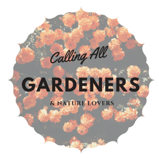 Calling All Gardeners, Tea Lovers, and Nature Lovers